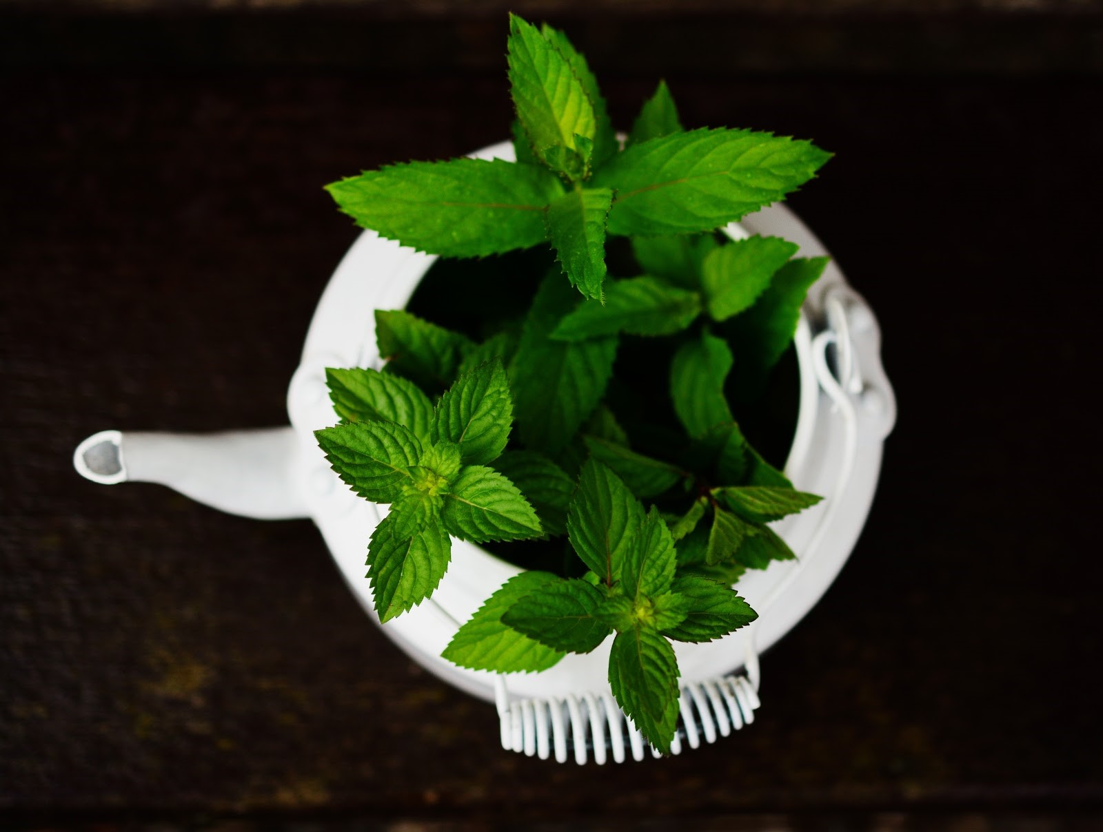 peppermint-oil-for-hair